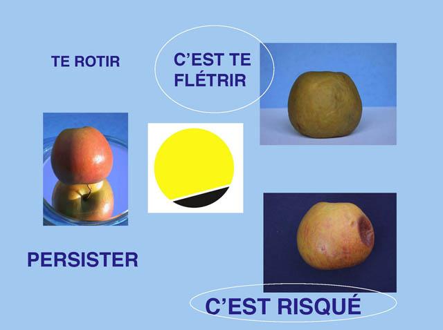 http://www.reseau-melanome-ouest.com/upload/fichier/environnement/environnement_Page_15.jpg